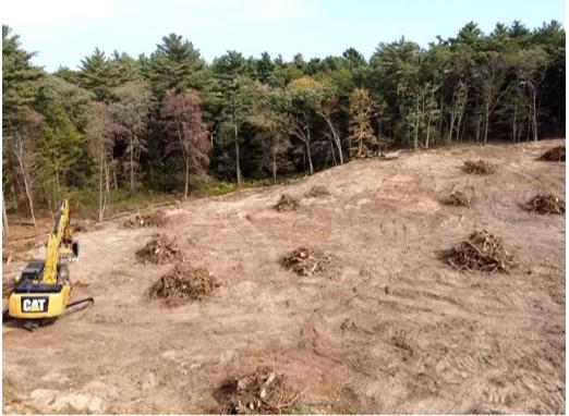Stump Excavation & stockpiling